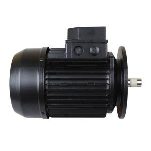 Двигатель к насосу Kripsol KA/KAP-250 (220 В) /5041.A/RBM0040.10R арт. RBM0040.10R