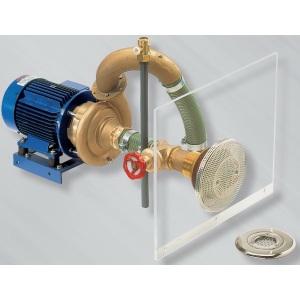 Гидромассажная установка Combi-Whirl-3, насосный комплект, 100 м3/ч, 5,2 кВт, 380 В, для бетонных басссейнов Hugo Lahme арт. 8650020