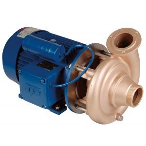 Насос без префильтра (помпа) Hugo Lahme RG 1,5 кВт 220 В, подключение G2′ арт. 7752050